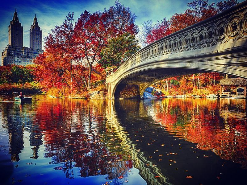 bow bridge central park in the fall