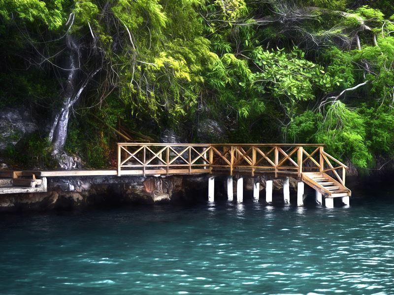 mangrove los haitises national park dom rep