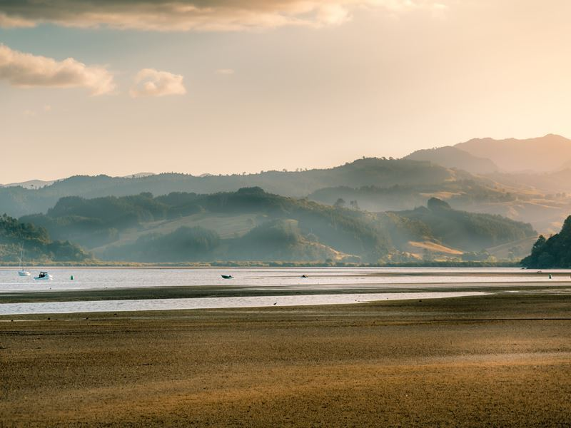 misty hills surrounding mercury bay coromandel