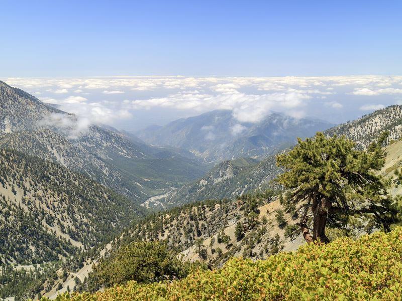 mount baldy in the san gabriel mountains