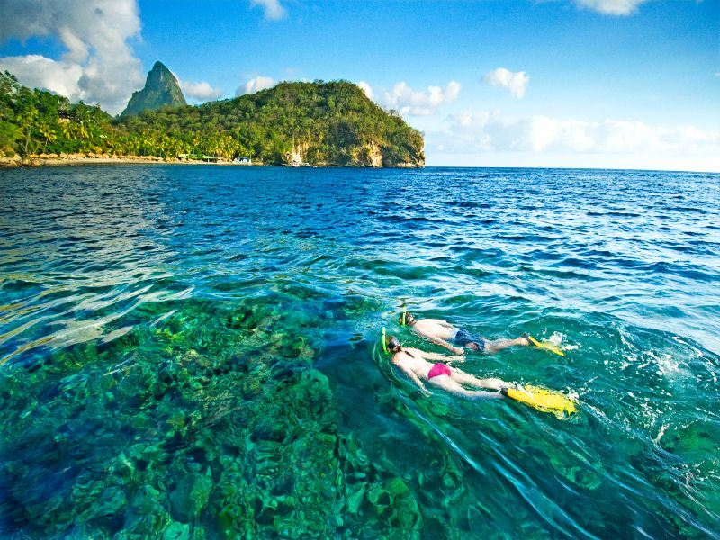 snorkelling at anse chastanet