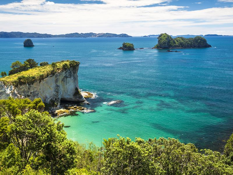stingray bay coromandel