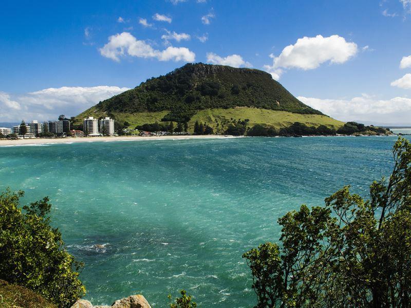 view of tauranga north island