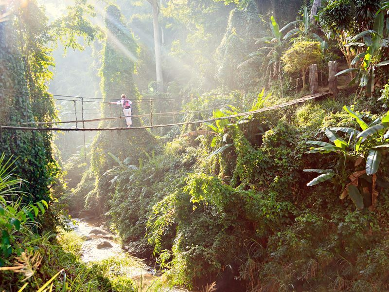 woman crossing suspension bridge in thailand rainforest
