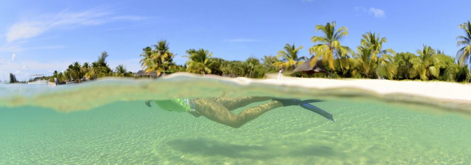 Snorkelling in the waters of Mozambique